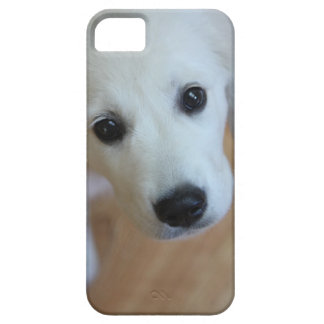 your favorite pet photo on an iphone4 case iPhone 5 cases