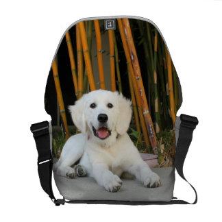 Your favorite photos on an Rickshaw messenger bag