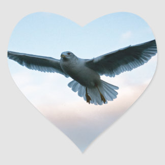Your Free Just LIke Jonathan Livingston Heart Sticker