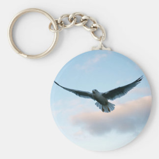 Your Free Just LIke Jonathan Livingston Keychain