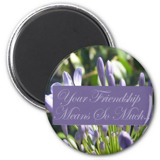 Your Friendship Means So Much Refrigerator Magnets