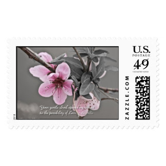 Your gentle Soul opened... USPS Stamps