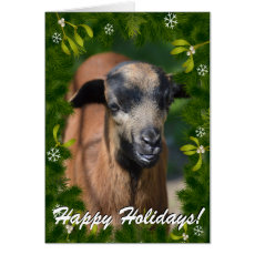 YOUR GOAT PHOTO in this Boughs and Mistletoe Frame Card