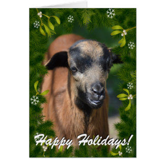 YOUR GOAT PHOTO in this Boughs and Mistletoe Frame Greeting Card