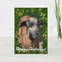 YOUR GOAT PHOTO in this Boughs and Mistletoe Frame Holiday Card