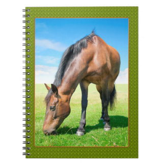 your horse. notebook