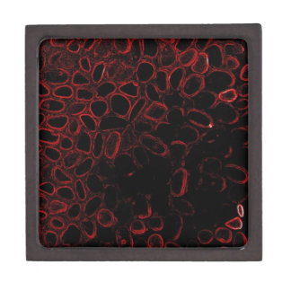 Your Just Like Neon (Red) Jewelry Box
