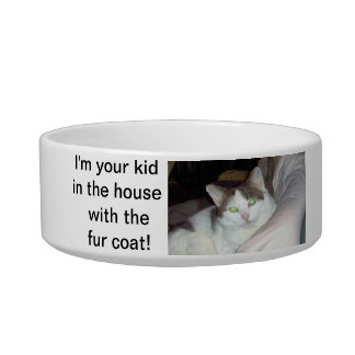Your kid in the house cat bowl. bowl