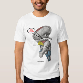 Your Memory Starts Here (Hippocampus Humor) T Shirt