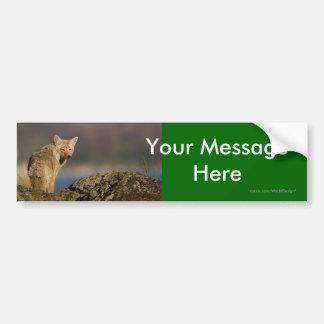 Your Message Bumper Sticker