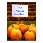 YOUR MESSAGE - Pumpkin Protest Post Cards