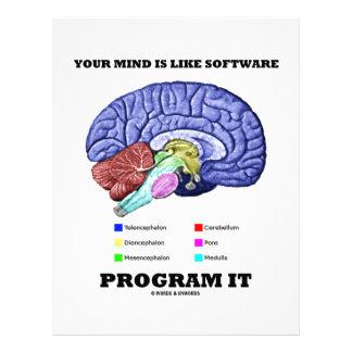 Your Mind Is Like Software Program It (Brain)
