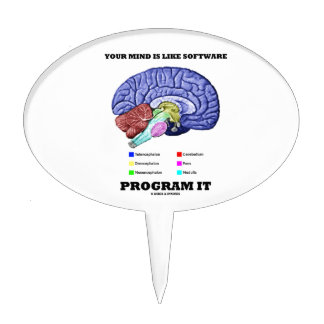 Your Mind Is Like Software Program It (Brain) Cake Topper