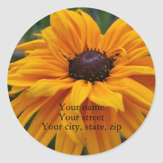 Your name, Your street, Your city, st... Classic Round Sticker