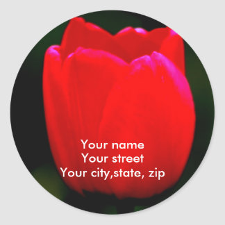 Your name, Your street, Your city,sta... Classic Round Sticker