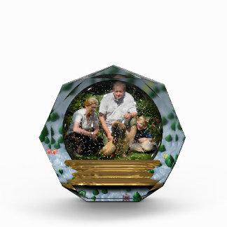 Your own photo in a Snowglobe Frame! - Acrylic Award