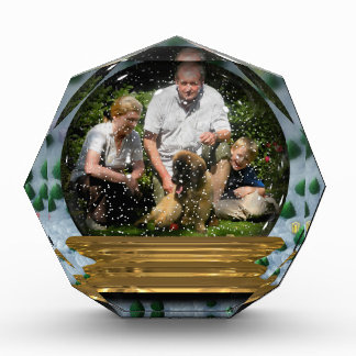 Your own photo in a Snowglobe Frame! - Award