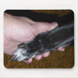 Your Paw in My Hand...... Mouse Pad
