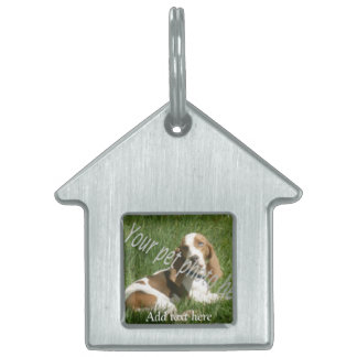 your pet doghouse tag