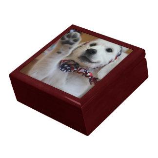 Your pet on a gift-box keepsake box