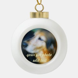 Your pet Photo christmas ball ornament