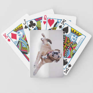 Your pet photo on playing cards