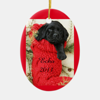 YOUR PET'S NAME & YEAR (OR OTHER INFO) CERAMIC ORNAMENT