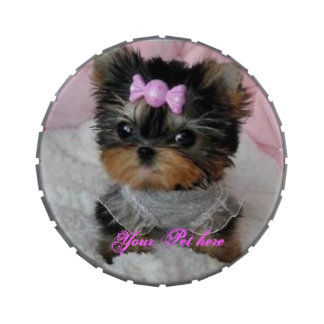 Your Pet's Picture JellyBelly Tins/Jars Candy Tins