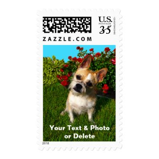 Your Photo and Text Personalized Stamps