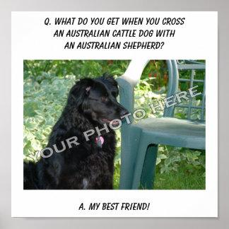 Your Photo! Best Friend Australian Cattle Dog Mix Poster