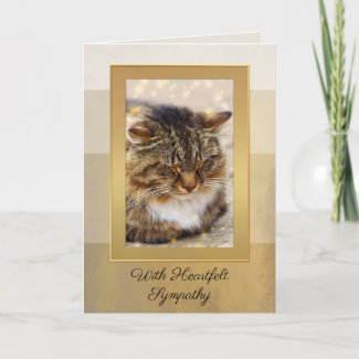 Your Photo Elegant Gold Striped Cat Sympathy Card