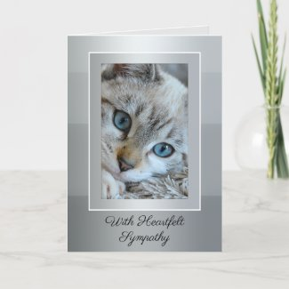 Your Photo Elegant Grey Striped Cat Sympathy Card