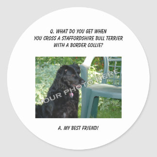 Your Photo! Friend Staffordshire Bull Terrier Mix Round Stickers