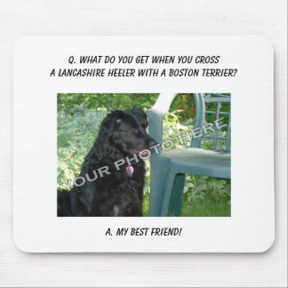 Your Photo Here! Best Friend Lancashire Heeler Mix Mouse Pad