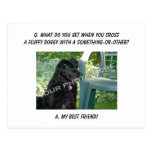Your Photo Here! Best Friend Mutt Mixed Breed Dog Post Card