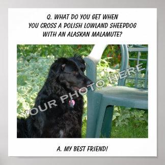 Your Photo Here! Best Friend Polish Sheepdog Mix Print
