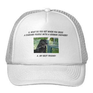 Your Photo Here Best Friend Standard Poodle Mix Mesh Hats