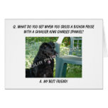 Your Photo Here! My Best Friend Bichon Frise Mix Greeting Cards