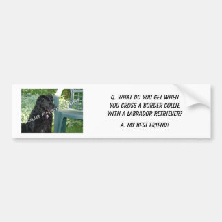 Your Photo Here! My Best Friend Border Collie Mix Bumper Sticker