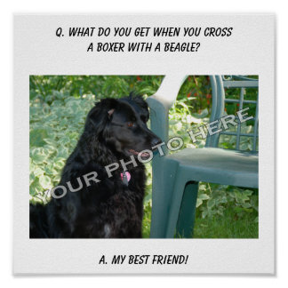 Your Photo Here! My Best Friend Boxer Mix Print