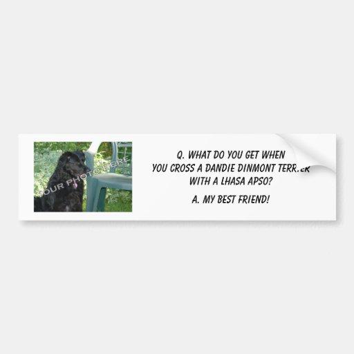 Your Photo Here! My Best Friend Dandie Dinmont Mix Car Bumper Sticker