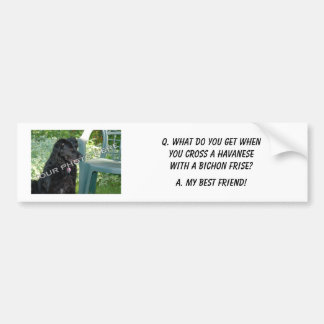 Your Photo Here! My Best Friend Havanese Mix Bumper Sticker