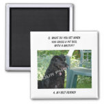 Your Photo Here! My Best Friend Pit Bull Mix Magnets