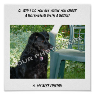Your Photo Here! My Best Friend Rottweiler Mix Print