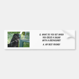Your Photo Here! My Best Friend Saluki Mix Bumper Sticker
