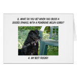 Your Photo Here! My Best Friend Sussex Spaniel Mix Greeting Card