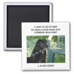 Your Photo Here! My Best Friend Sussex Spaniel Mix Magnet