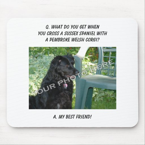Your Photo Here! My Best Friend Sussex Spaniel Mix Mousepad