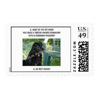 Your Photo Here! My Best Friend Treeing Walker Mix Postage