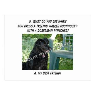 Your Photo Here! My Best Friend Treeing Walker Mix Postcard